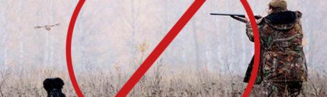 В Калужской области введен запрет на весеннюю охоту