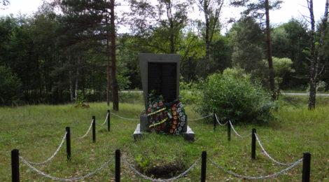 Братская могила № 554, деревня Палькевичи